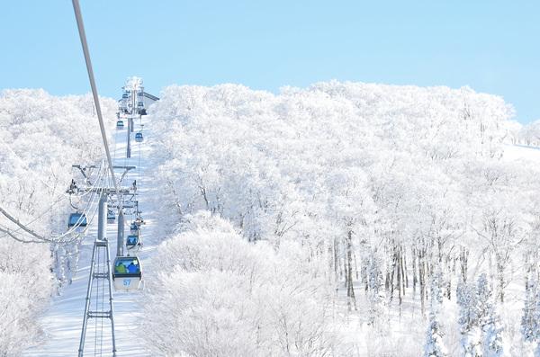 阿仁滑雪場