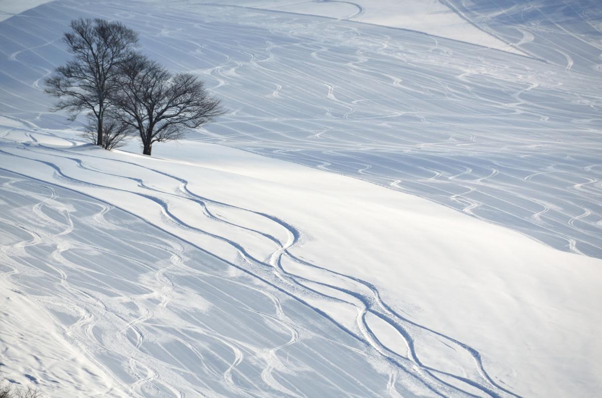 場 天気 スキー 川場